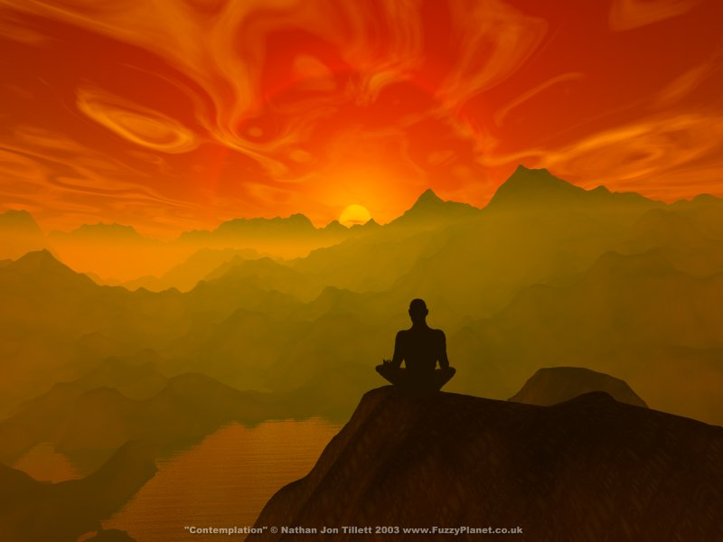 EQ, Mindfulness, and Gratitude…Islands of Peace in Stressful Times