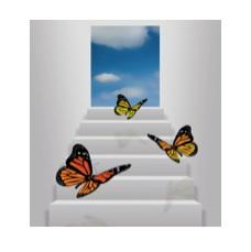 Wilmott Butterflies