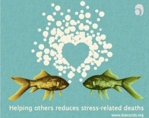 stress-neuroscience
