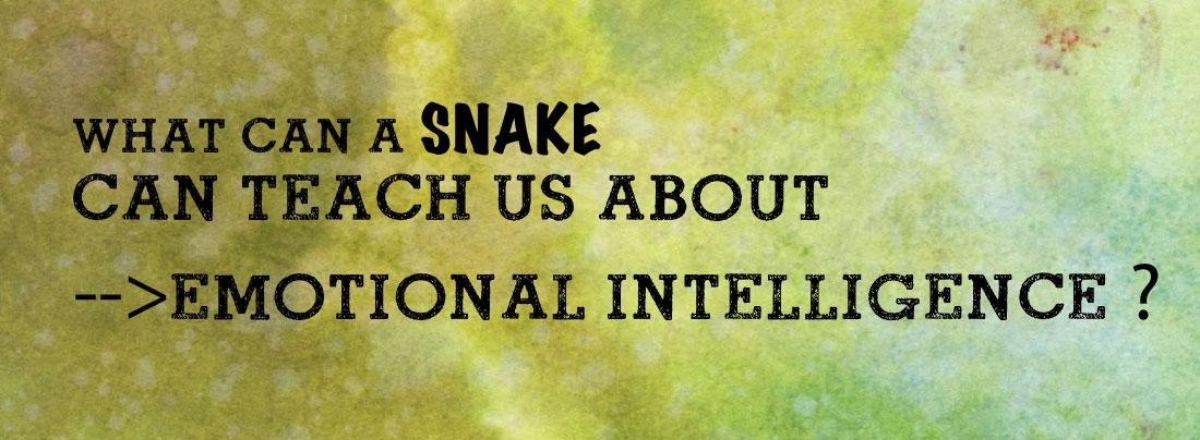 snake-banner